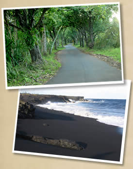 Puna S Scenic Hwy 132 And Kehena Black Sand Beach